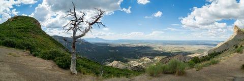 Mesa Verde National Park in Colorado Royalty-vrije Stock Afbeelding