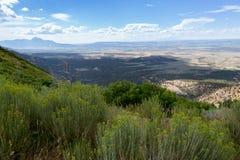 Mesa Verde National Park in Colorado. Stock Image