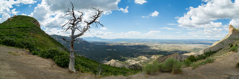 Mesa Verde National Park dans le Colorado Image libre de droits