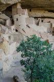 Mesa Verde Tower Royaltyfri Bild