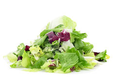 Mesclun Stock Images