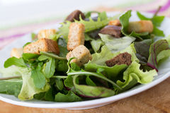 mesclun salad Royalty Free Stock Photos