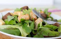 Mesclun salad. With crouton closeup Stock Photography