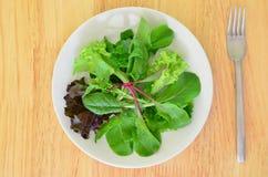 Mesclun Salat Lizenzfreie Stockfotografie