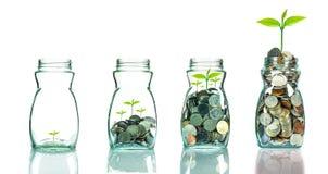 Mescoli le monete ed il seme nel chiaro blottle su fondo bianco, affare Fotografia Stock Libera da Diritti
