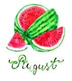 Mese augusto Anguria matura royalty illustrazione gratis