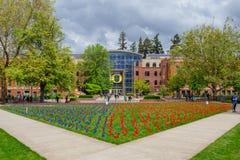 Mese di consapevolezza dell'aggressione sessuale all'università di Oregon Fotografie Stock Libere da Diritti