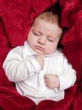 3 meses bonitos do bebê que dorme na cama coberta com a cobertura vermelha Imagem de Stock Royalty Free