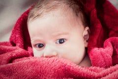 3 meses bonitos do bebê que encontra-se na cama coberta com a cobertura vermelha. Imagem de Stock