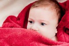 3 meses bonitos do bebê que encontra-se na cama coberta com a cobertura vermelha. Fotos de Stock Royalty Free