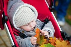 9 meses bonitos do menino no carrinho de criança que joga com folhas Fotos de Stock