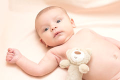 2 meses de bebê com brinquedo Fotografia de Stock