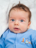 2 meses de bebê idoso em casa Fotografia de Stock Royalty Free