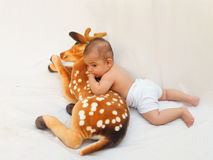 4 meses de bebê idoso que joga com o brinquedo macio caro e o pintainho Foto de Stock Royalty Free