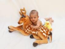 4 meses de bebê idoso que joga com o brinquedo macio caro e o pintainho Imagem de Stock