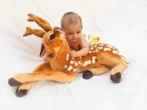 4 meses de bebê idoso que joga com o brinquedo macio caro e o pintainho Foto de Stock