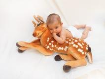 4 meses de bebê idoso que joga com o brinquedo macio caro e o pintainho Fotografia de Stock