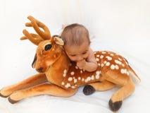 4 meses de bebê idoso que joga com o brinquedo macio caro e o pintainho Fotos de Stock Royalty Free