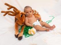 4 meses de bebê idoso que joga com o brinquedo macio caro e o pintainho Imagem de Stock Royalty Free