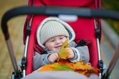 9 meses de muchacho en el cochecito que juega con las hojas Fotos de archivo libres de regalías