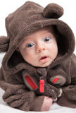 2 meses de retrato do bebê Fotos de Stock