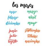 Meses del Los - meses en español, cita dibujada mano de las letras latinas aislada en el fondo blanco Tinta del cepillo de la div ilustración del vector