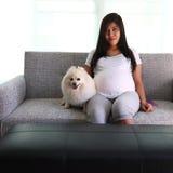 Meses embarazada de la mujer 9 y perro pomeranian Imágenes de archivo libres de regalías
