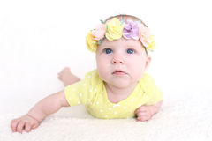 3 meses hermosos de bebé en la guirnalda de flores Fotografía de archivo libre de regalías