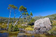 Meseta alpestre australiana Foto de archivo libre de regalías