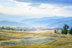 Meseta de Blacktail en el parque nacional de Yellowstone, Wyoming, los E.E.U.U. Foto de archivo