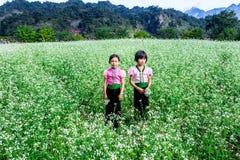 MESETA de MOC CHAU, VIETNAM - 24 de noviembre de 2013 - niños no identificados étnicos en jugar tradicional de los trajes Imágenes de archivo libres de regalías