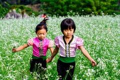 MESETA de MOC CHAU, VIETNAM - 24 de noviembre de 2013 - niños no identificados étnicos que se relajan Fotografía de archivo