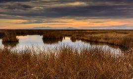 Meseta del río del oso en la puesta del sol Fotografía de archivo