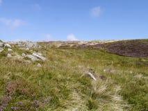 Meseta herbosa con la pendiente apacible por el canto fotografía de archivo