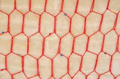 Mesh fabric background Royalty Free Stock Photo