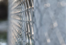 Mesh fence Royalty Free Stock Image