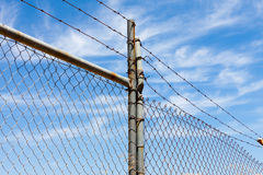 Mesh fence with barbed wire Stock Photography
