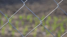 Mesh fence close up. Fence grid stock video footage