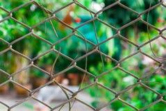 Mesh Fence met Vage Achtergrond Royalty-vrije Stock Afbeelding