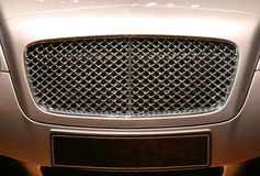 Mesh Grille. A bonnet mesh grille from a luxury car Royalty Free Stock Photos