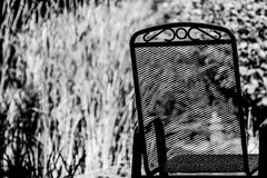 Mesh and metal chair in garden Royalty Free Stock Photo