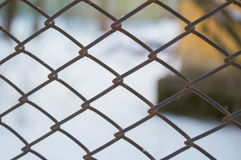 Mesh netting as a fence in the winter. Fence a fence from the grid as a background Royalty Free Stock Photo