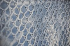 Mesh netting , frost , snow. Mesh netting, frost, snow, the focus in the center of the grid in the winter Stock Photos