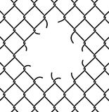 Mesh netting Torn. Rabitz  with hole. Mesh fence Ripped backgrou Royalty Free Stock Photo