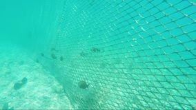 Mesh for protecting the sea coast from sea fish.  stock video footage