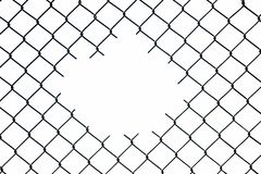 Mesh wire fence on the white background. Isolated royalty free stock photos