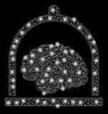 Mesh Wire Frame Brain Conservation brilhante com pontos claros ilustração royalty free