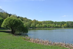 Meshchersky pond. Moscow Royalty Free Stock Image