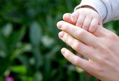 6 mesi del bambino della mano della madre della tenuta divertente del padre Immagini Stock