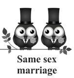A mesma união do sexo Fotografia de Stock Royalty Free